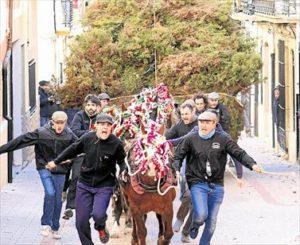 Las arrosegades - Fiesta de Sant Antoni de Albocasser