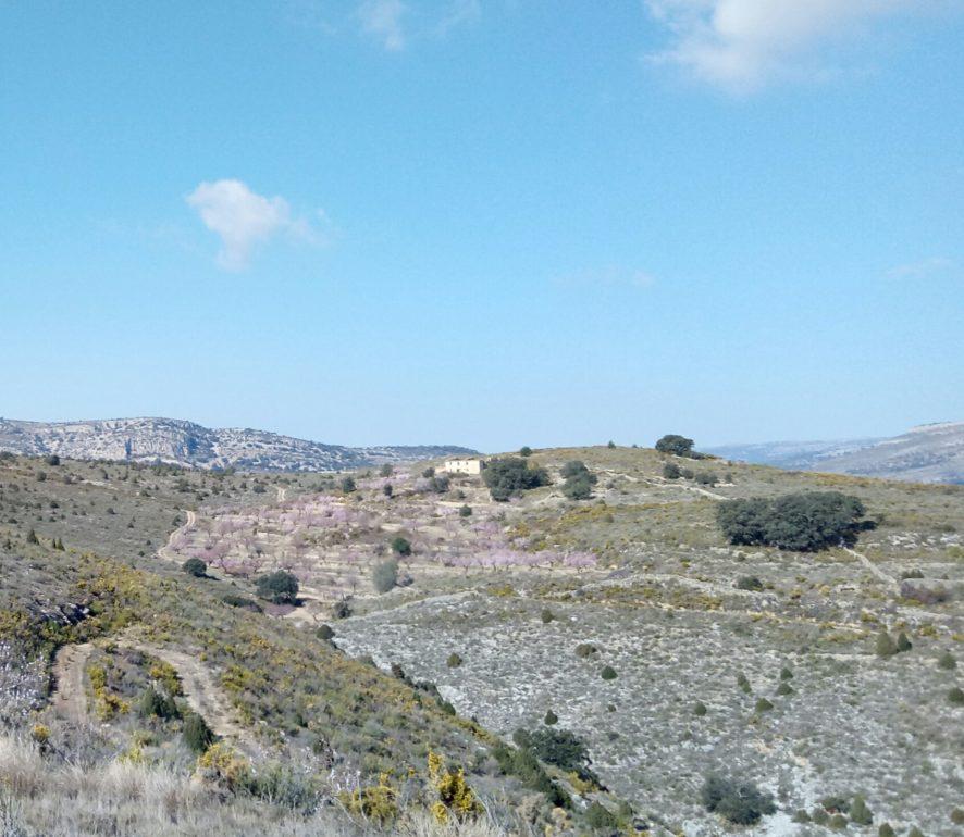 Mas del Cubila, Ruta Trincheras Vilar de Canes, Castellón