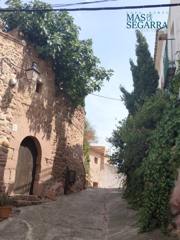 La imagen tiene un atributo ALT vacío; su nombre de archivo es visitar-Vilafanes-en-Mas-de-ka-Segarra-578x770.jpg